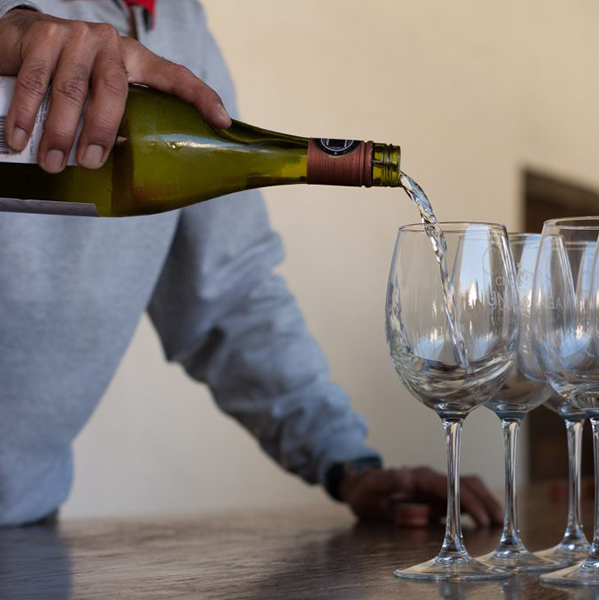 wineries-vince-veras